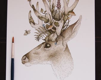 ORIGINAL Spring Buck Watercolour and Ink Illustration