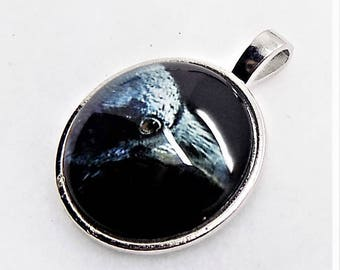 "ON SALE! Raven pendant; eerie and beautiful, black Raven, glass cabochon pendant, silver plated, 1 1/2"", 1pc/6.00."