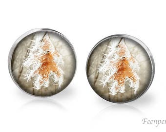 Stud Earrings Frosted 16