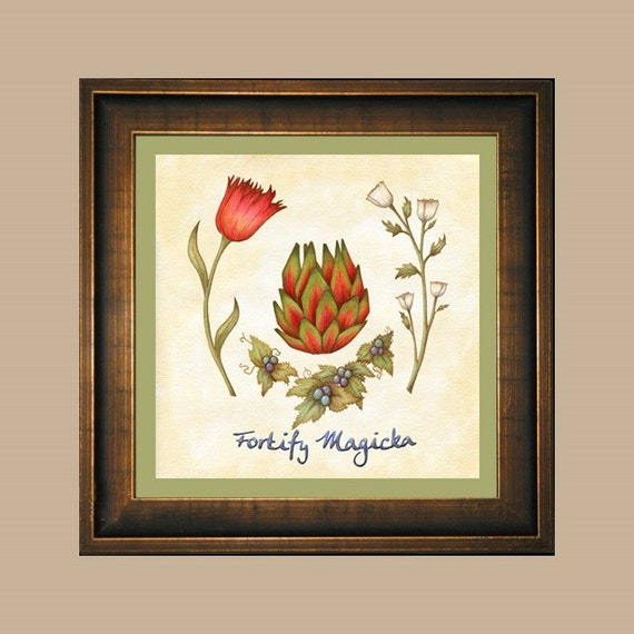Fortify magicka skyrim red mountain flower tundra cotton mightylinksfo Images