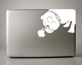 Bridget the English Bulldog Sniffs Apple Decal Macbook
