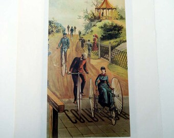 Columbia Bicycle Race /  Ferry and Co Standard Seeds For Sale Here Vintage Advertising Poster Size Book Plate