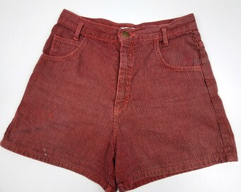 Vintage High Waisted Shorts, Women's High Waisted Denim Shorts, Grunge High Waisted Shorts, Retro High Waisted Shorts, Pinstriped Denim Shor
