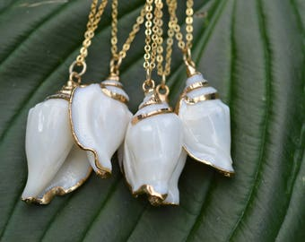 Seashell Pendant necklace with Gold Accent