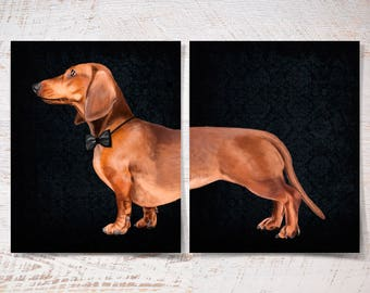 Dachshund double print, Dachshund double poster pet two prints gift funny dog print pet portrait illustration wall art fine art wall decor