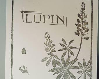 Lupin.