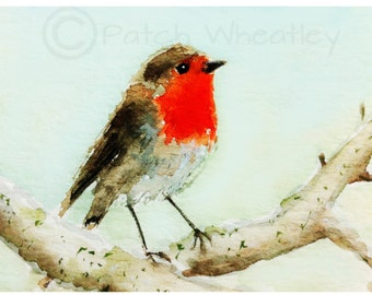 Robin Bird  Art  Print #159