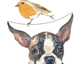 Dog Watercolor Fine Art PRINT - Boston Terrier, English Robin, Daredevil Bird, Funny Watercolor Painting, Dog Lover Gift