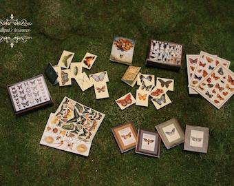 Digital downloads dollhouse miniature butterflies set - 29 pieces