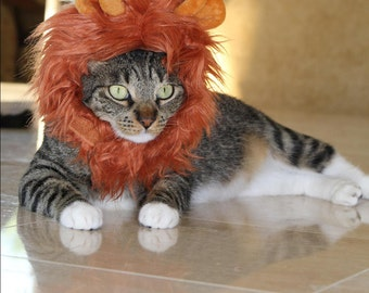 Cat_Dog Lion Mane/Cat_Dog Lion Costume_Hat/Packaged in signature gift bag