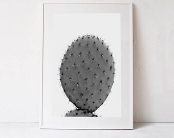 Large Botanical Print Large Cactus Print, Black and White Cactus Photography INSTANT DOWNLOAD Printable Art Minimalist Poster Large Wall Art