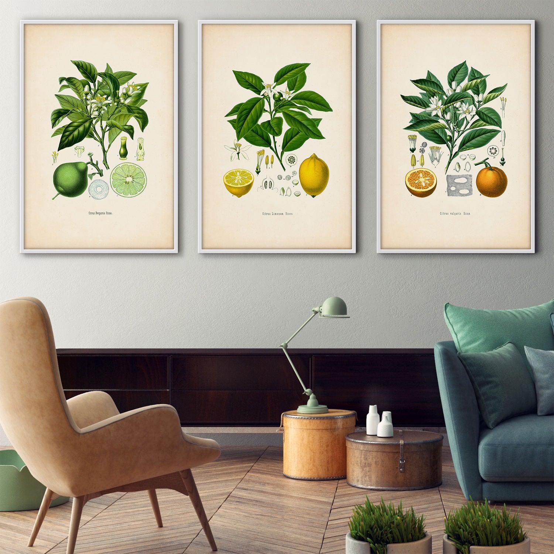 Gerahmt botanische print Set Citrus gerahmte Kunst