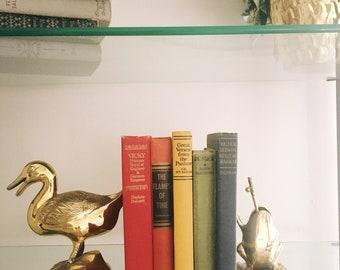 Set of rainbow books / colorful books