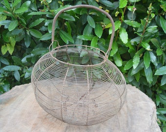 Exceptionnal XXL huge  antique french wire egg basket shabby chic