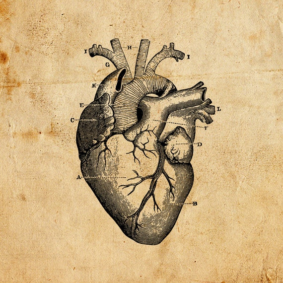 Vintage Heart Vector Png Jpeg Digital Download Art