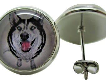 Siberian Husky Dog Earrings - New - Pair!