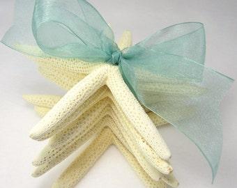 Beach Decor Starfish Gift Set, Nautical Decor White Starfish Gift Set, Beach Wedding Favor, Beach Gift, Wedding Favor - 6PC w Aqua Ribbon