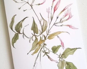 Greeting card / Star Jasmine / Botanic watercolor painting