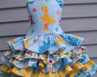 Ready to Ship Custom Boutique Sesame Street Toddler 5 Ruffle Girl Dress  Size 3