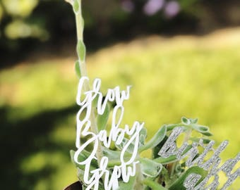 Grow Baby Grow Planter Stake,Plant Decor,Best Birthday Gift,Succulents,Green Thumb,Plant Lade,Cactus,Celebrate,Acrylic,Laser Cut,2 Ct