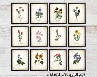 Vintage Wildflower Prints. Botanical Print Set. Wildflower Art. Vintage Botanical Art. Wildflower Decor. Farmhouse Art. Botanical Wall Art.