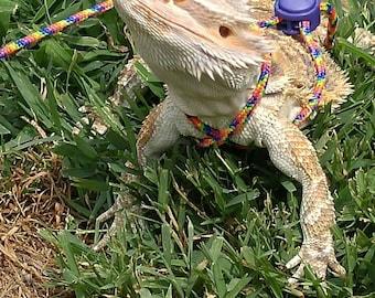 Bearded dragon harness/leash 10 ft. Rainbow
