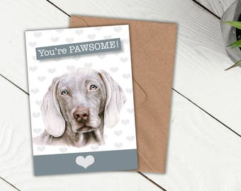Weimaraner, Pawsome Dog Card, Dog Owner, Dog lovers card, best friend card, anniversary, love card, thank you card, special someone