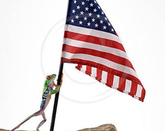 American Flag, Frog and Flag. Patriotic Tree Frog, Americana