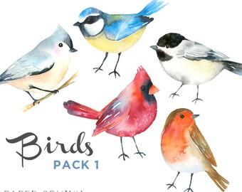 Watercolor Birds Clipart   Winter Birds Clipart - Woodland Animals - Robin, Cardinal Songbirds - Scrapbooking Nature Art - Digital Instant D