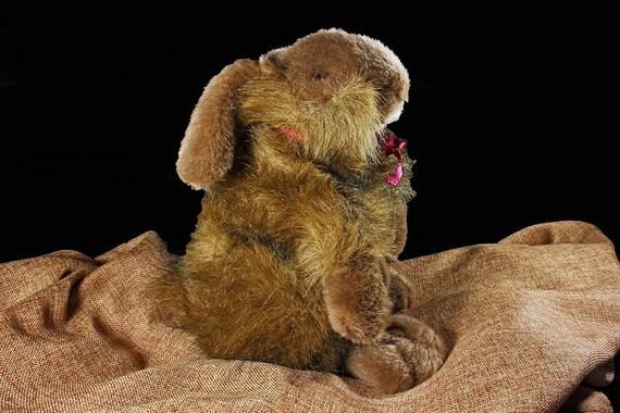 Bunny Rabbit, Stuffed Animal, Carlton Cards, Heartwarmers