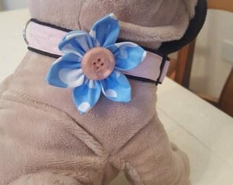Dog collar flowers