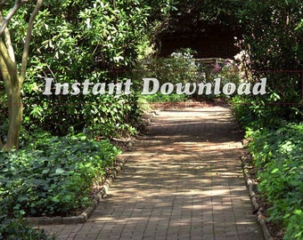Wooded Path Brick Road Through Woods Forest Trees Nature Walk Image Photograph Printable Instant Digital Download High Res JPEG File