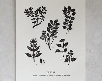 8X10 Letterpress Art Print - HARISSA