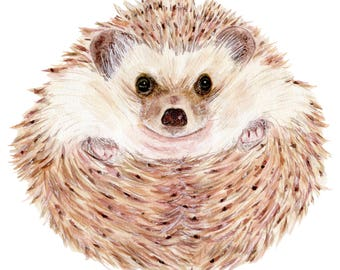 Hedgehog,Instant Print, Printable Art, 8 x 10 printable art, Digital Print, Art, Wall Art, Nursery Art, Animal Art, Woodland, Nature, Cute