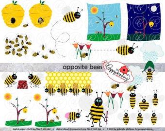 Gegenüberliegenden Bienen Clipart: Digitale ClipArt (300 dpi) Lehrer unterrichten Gegensätze Hummeln ClipArt