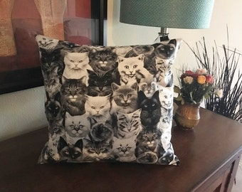 Throw Pillow Cover | Home Accessory | Cats Kittens Pillow