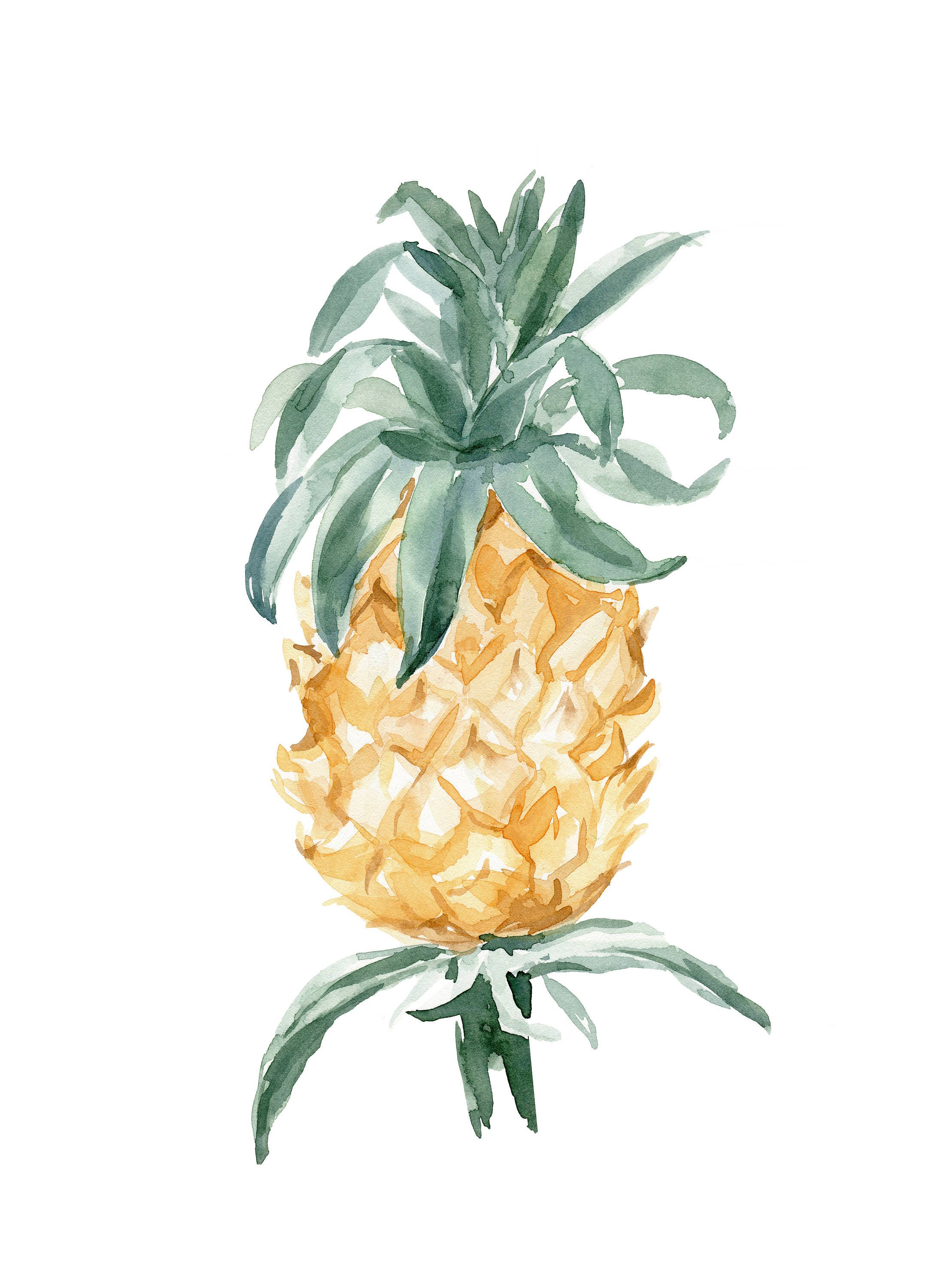 Pineapple Watercolor No.101 Pineapple Watercolor Print Vintage ...