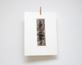 Spruce etching, hand printed, original wall art, silhouette of a spruce tree, woodland print