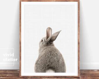 Woodland Nursery Wall Art, Bunny Tail Print, Rabbit Print, Nursery Art, Nursery Decor, Nursery Animal Prints, Prints Wall Art, Printable