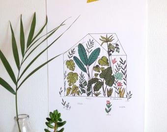 Serre tropicale, jardin botanique, serre, botanique poster, cactus, succulents, palmiers - affiche botanique, serre, jardin - format A4