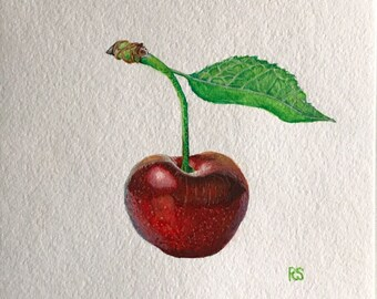 The Cherry, Watercolor
