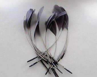 set of 10 15cm grey feathers
