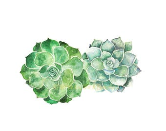 Succulents Print, Watercolour Succulents, Fat Plants Art, Botanical Art, Colourful Succulent Plants, Art for Home, Art for Office