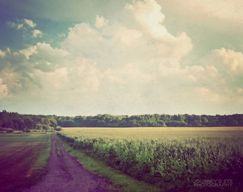 Country photograph, landscape photography, fine art print, Illinois, dreamy nature photo, nursery, home decor - Country Road