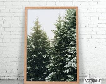Christmas trees - Pine trees print- Printable Wall art - Digital print - Modern Scandinavian design – Photography