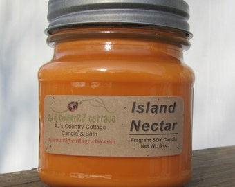 ISLAND NECTAR type SOY Candle - Fruit Candles, Mango Candles, Pineapple Candles, Berry Candles, Coconut Candles, Summer Candles, Scented