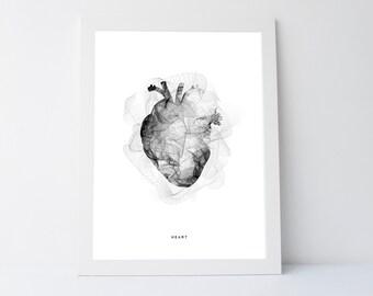 Black heart print, black white wall print, printable art, anatomy heart print, human anatomy art, anatomy poster, anatomy heart wall art