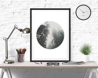 Forest Print, Fog Forest Print, Minimalistic Print, Forest Circle, circle photo, Fog Photo, Fog Art, Fog Forest Art, Forest wall art