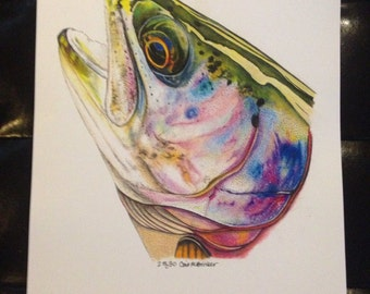 """FULL size 11x17"""" Rainbow Trout Limited Edition Print"""