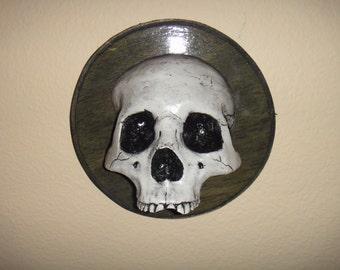 Circle black skull plaque